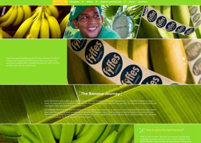 Fyffes-bananas